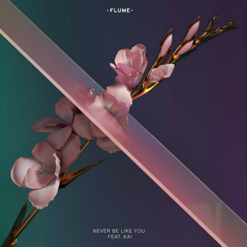 Flume - Never Be Like You 앨범이미지