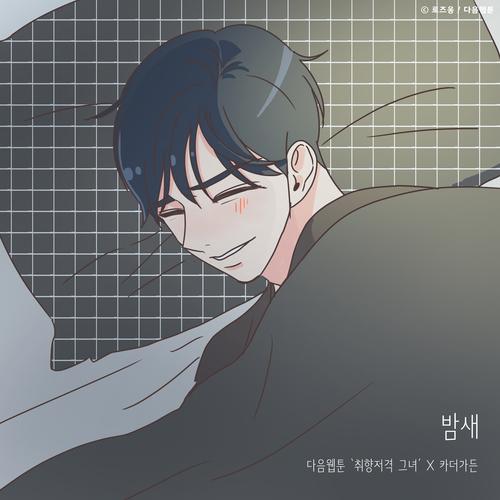 카더가든 - 밤새 (취향저격 그녀 X 카더가든) 앨범이미지